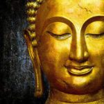 Best Motivational Buddha Quotes life changing love success karma death anger peace