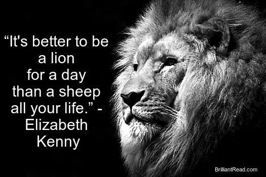 33 Best Motivational Lion Quotes The King Lion Quotes Brilliant Read