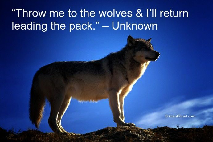 Quotes about Wolf