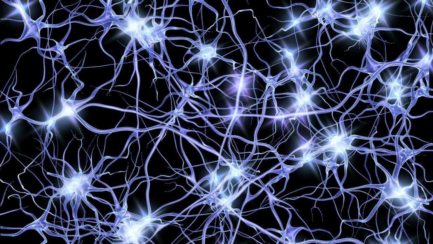 11 Effective Ways To Regenerate Brain Cells and Boost Memory