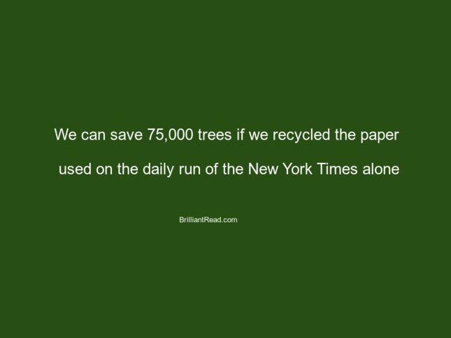 facts about cutting trees save trees afforestation natural resources environment