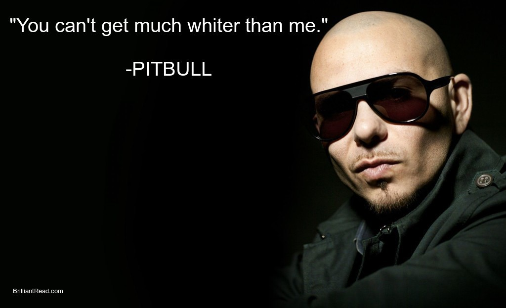Inspiring quotes by Pitbull
