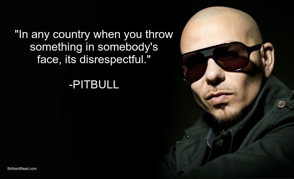 Success quotes by Pitbull